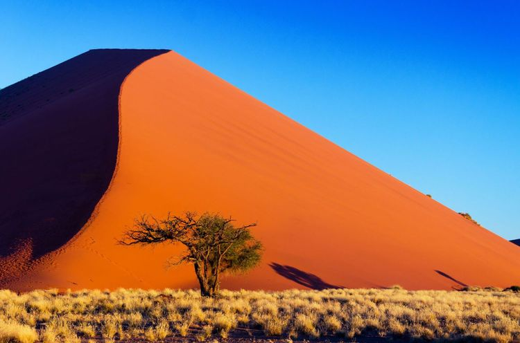 Namib desert, Sossusvlei, Namibia © JaySi/Shutterstock