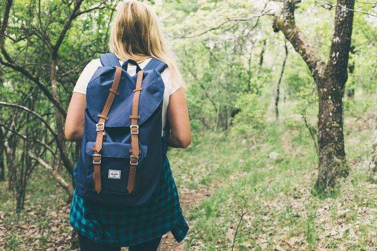 Backpack, woods