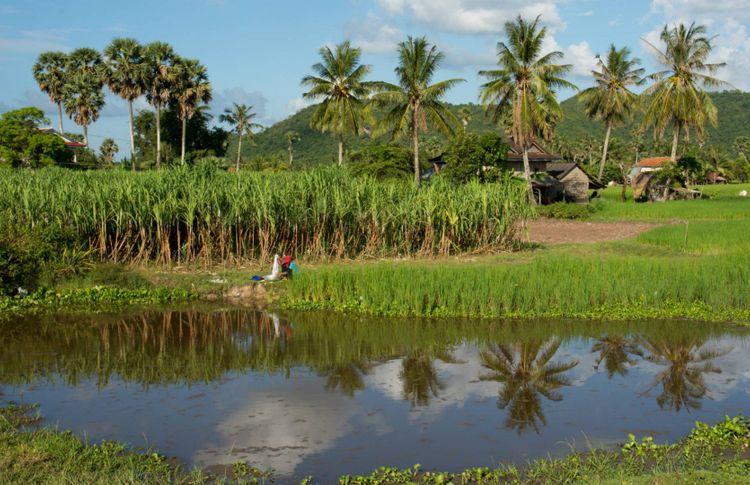 battambang-cambodia-shutterstock_361490546