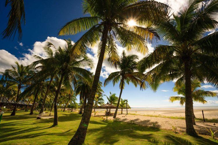 beach-palm-viti-levu-fiji-shutterstock_548199901