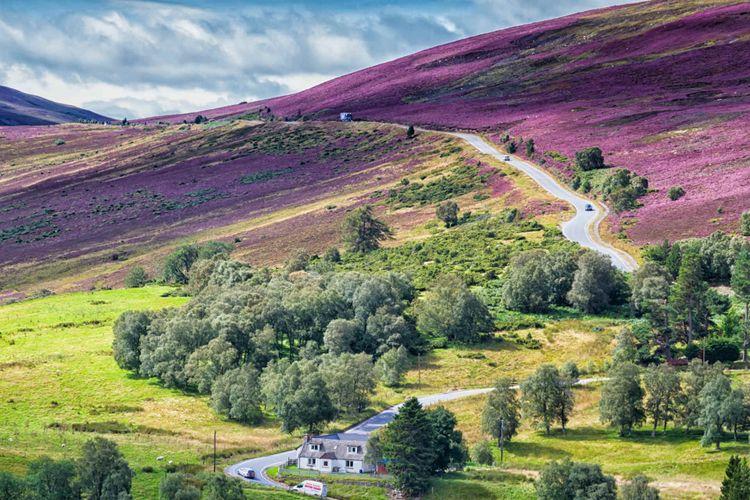 Cairngorms National Park, Scotland © Milosz Maslanka/Shutterstock
