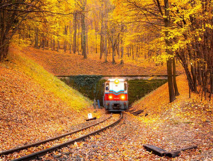 children-train-hungary-shutterstock_1220255083
