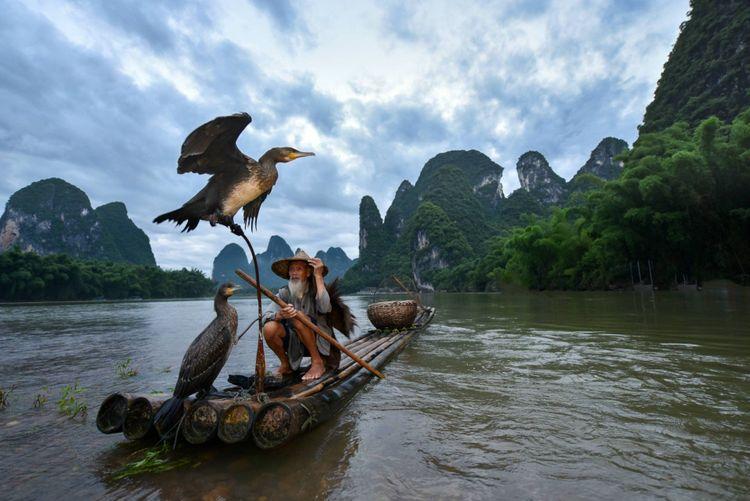 cormorant-fishermen-boat-china-shutterstock_676403416