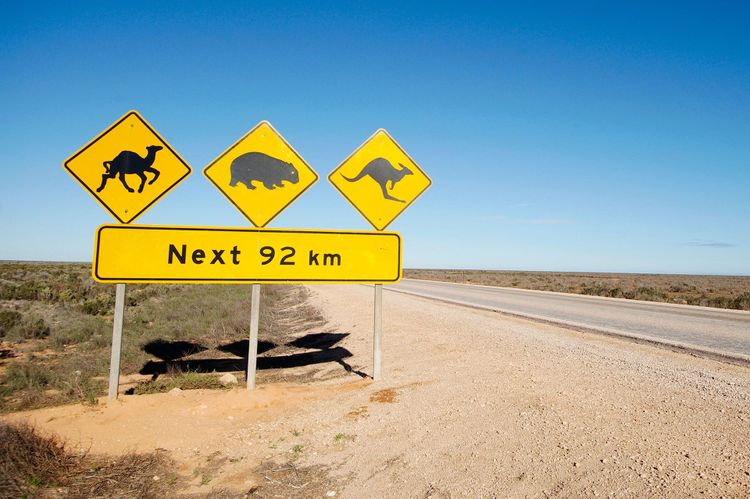 Road sign, Australia