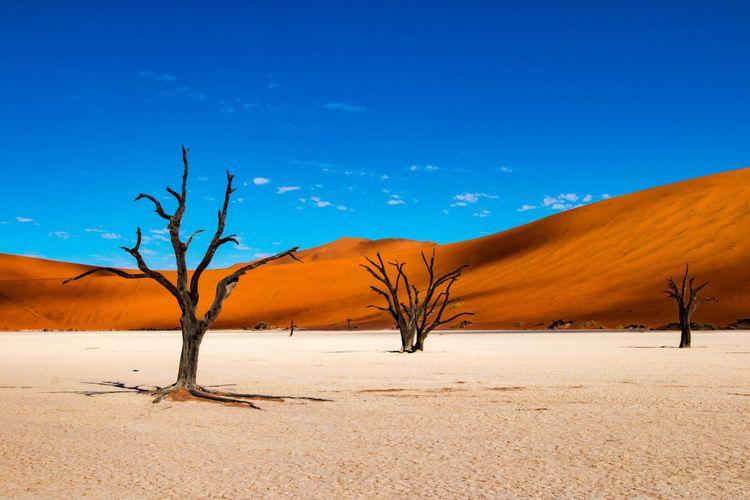Deadvlei, Namib-Naukluft National Park in Namibia