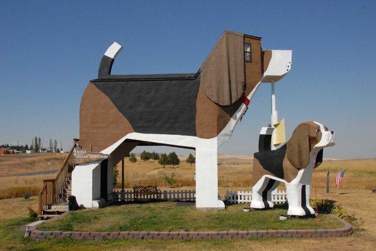 dog-bark-park-inn-shutterstock_671492668