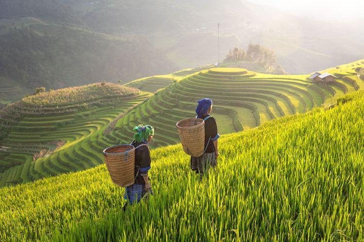 Hmong ethnic minority women in Mu Cang Chai, Yen Bai, Vietnam © Chachamp/Shutterstock