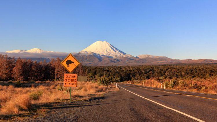 kiwi-road-ngauruhoe-tongariro-new-zealand-shutterstock_1401414941
