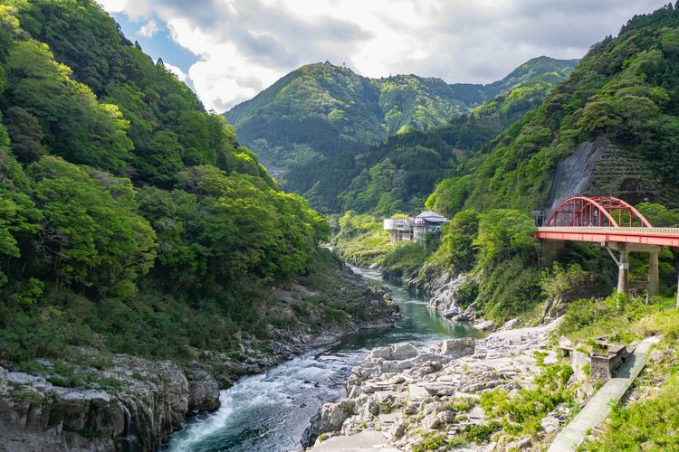 Lush Iya Valley landscape, bridge, gorge, shikoku, japan © okimo/Shutterstock