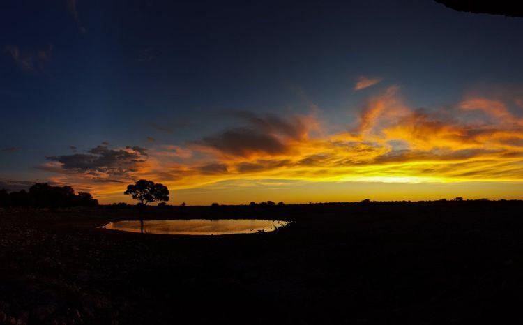Sunset in Etosha, Namibia © Lottie Gross