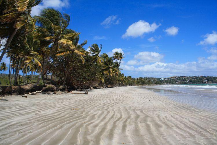 Rockley Bay, Tobago