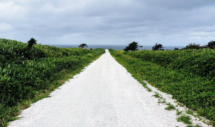 Soya Hills White Path
