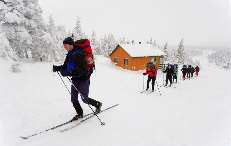 Skiers, Gaspesie National Park, Quebec