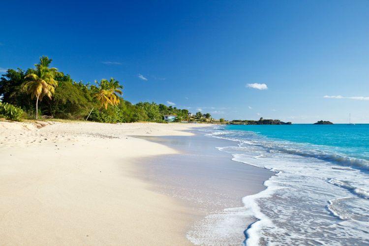 turners-beach-antigua-shutterstock_767379343