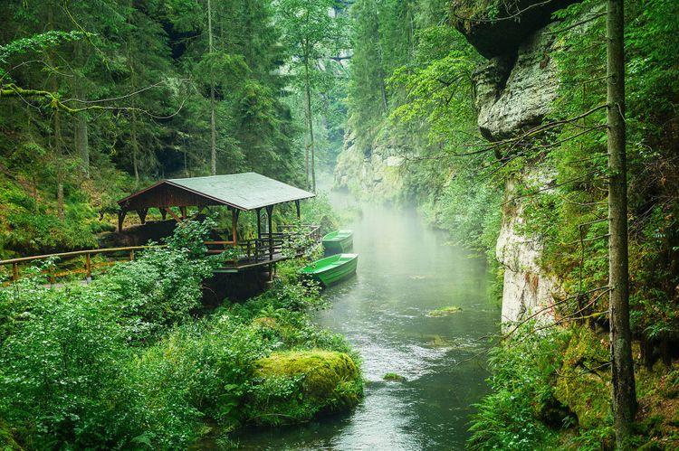 View Gorges in Czech Switzerland on the Kamenice River © GitaFoto/Shutterstock