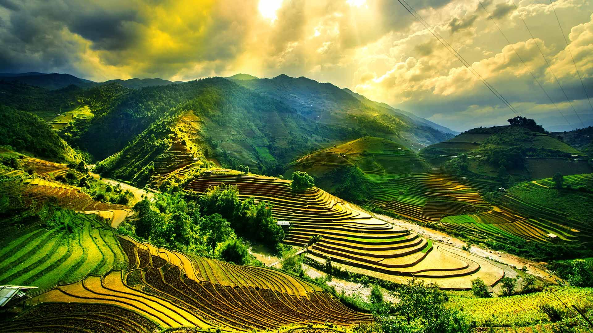 Vietnam Travel Guide   Places to Visit in Vietnam   Rough Guides